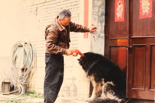 Mann fönt Hund