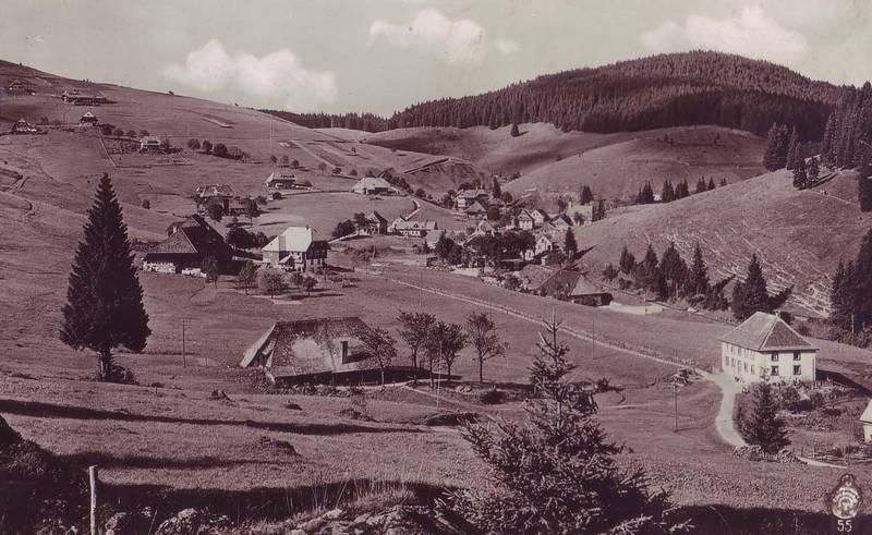 bergdorf, Häuser, land, LKW-Kipper, schwarzwald