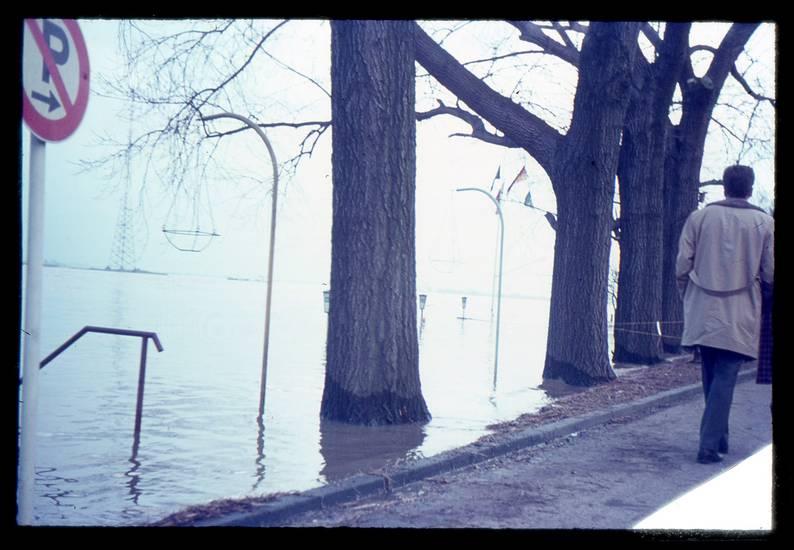 Fluß, Hochwasser, parkverbot, Ufer