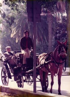 Kutschfahrt in Palermo