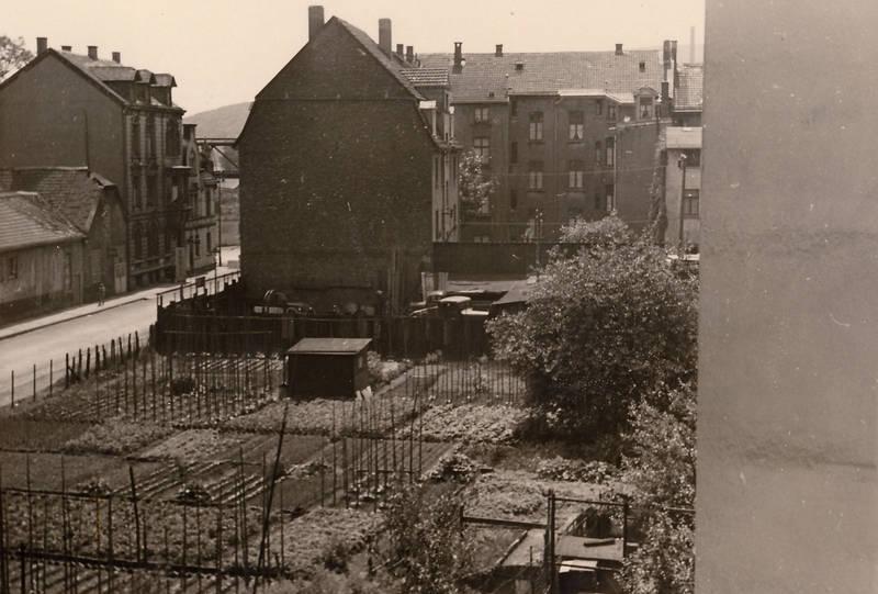 Beet, bohnenstangen, Hinterhof, laube, Wohngebiet, wohnsiedlung, Wuppertal
