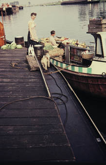 Marktboot