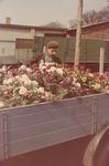 Blumenlaster