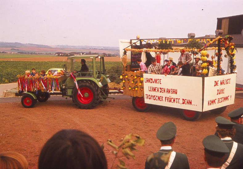 anhänger, Banane, dürre, erntedankfest, traktor, tropische früchte