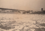 Eisschollen auf dem Rhein