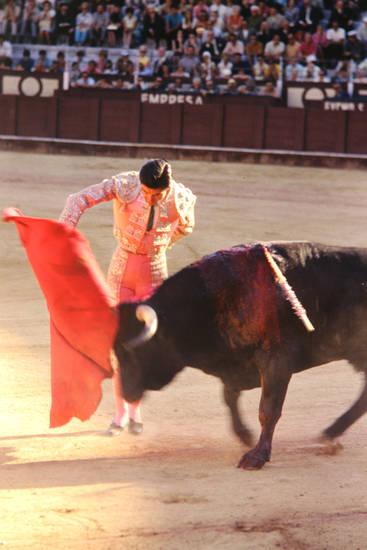 Spanien, Stier, stierkampf, Torero, tuch