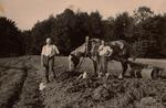 Landwirte auf Boddert