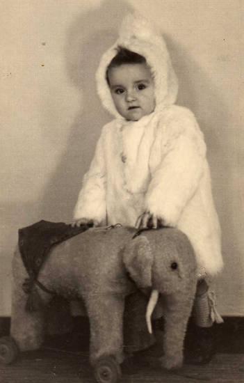 fotograf, Kaninchenfell, kleinkind, Steiff-Tier