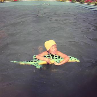 Schwimmen mit einem Krokodil