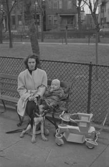 Spaziergang mit Hund und Kind