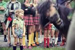 Pony mogelt sich aufs Foto