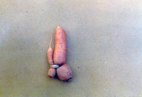 Karotten-Hochzeit