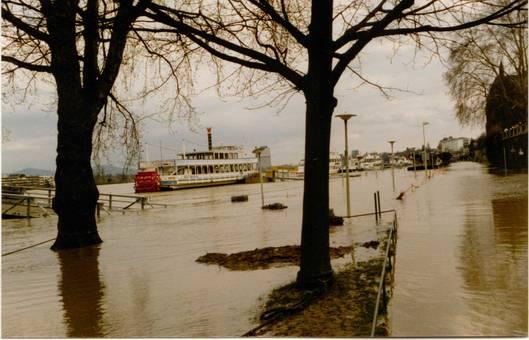 Rheinhochwasser in Bonn 1988