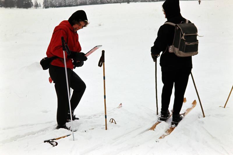 Hohes Venn, Rucksack, schnee, Ski, skier, Skistock, skistöcke, winter, Wintersport
