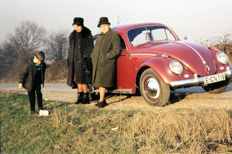 ausflug, auto, behälter, essen, KFZ, PKW, VW Käfer, wiese