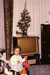 Fernseher mit Weihnachtsbaum