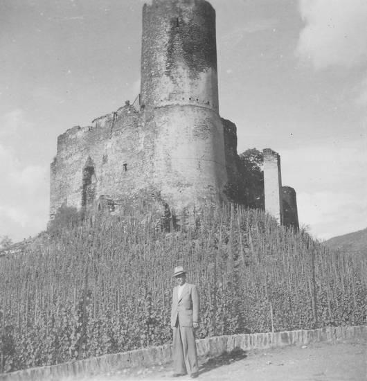 burg, Burgruine Landshut, hut, Ruine, wein, Weinberg