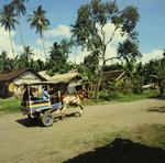 Fahrt mit einer Rikscha