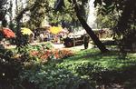 Liliputbahn im Rheinpark