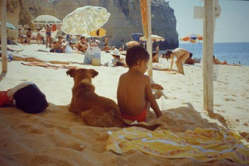 Praia Centianes, Algarve