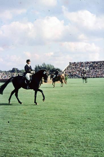 CHIO, CHIO Aachen, dressur, dressurreiten, Pferd, pferdesport, Pferdesport-Turnier, publikum, Reiter, Zuschauer