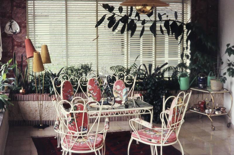 Blume, lampe, Möbel, pflanze, Stuhl, tisch
