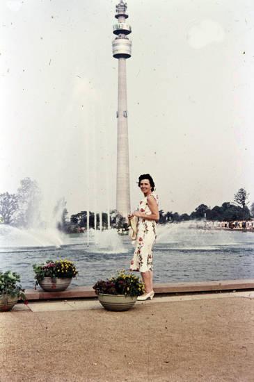 ausflug, Aussichtsturm, Blumentopf, Fernsehturm, flamingoteich, Florianturm, Wahrzeichen, westfalenpark