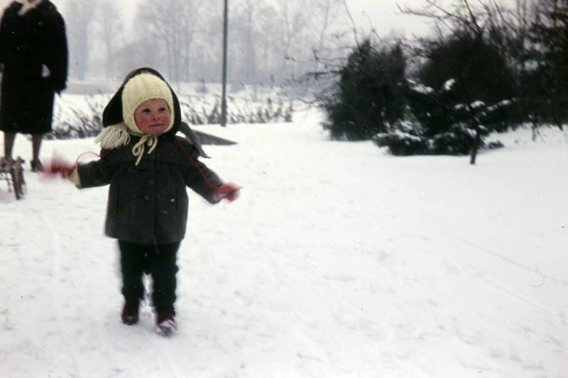 Handschuh, Kälte, Kindermode, mütze, schal, schlitten, schnee, spaziergang, winter