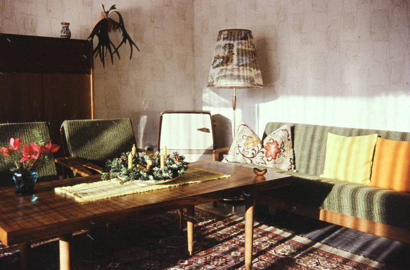 Blume, Blumenvase, Deko, Dekoration, einrichtung, kissen, Möbel, Ofen, sessel, stehlampe, tapete, Teppich, tisch, Vase, wohnzimmertisch