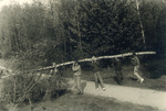 Maibaumschlagen