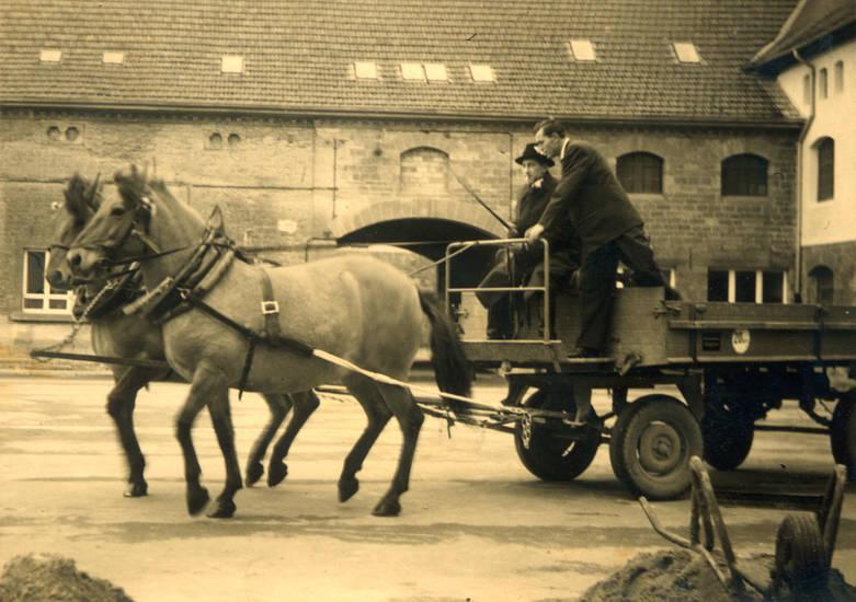 anhänger, Bauernhof, fuhrwerk, Gummiwagen, Hof, kutscher, Pferd, schubkarre