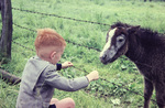 Ein Junge und ein Pony