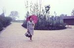 Dame mit Regenschirm