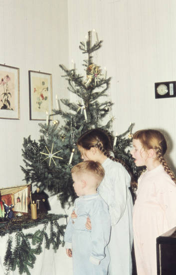 Tannenbaum Singen.Singen An Der Krippe Wdr Digit