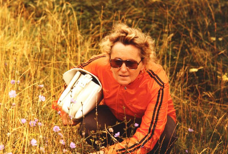 Blumenwiese, Handtasche, mode, sonnenbrille, wiese