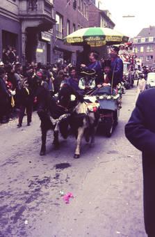 Karneval der Pferde