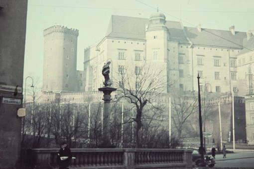 Die Wawelburg