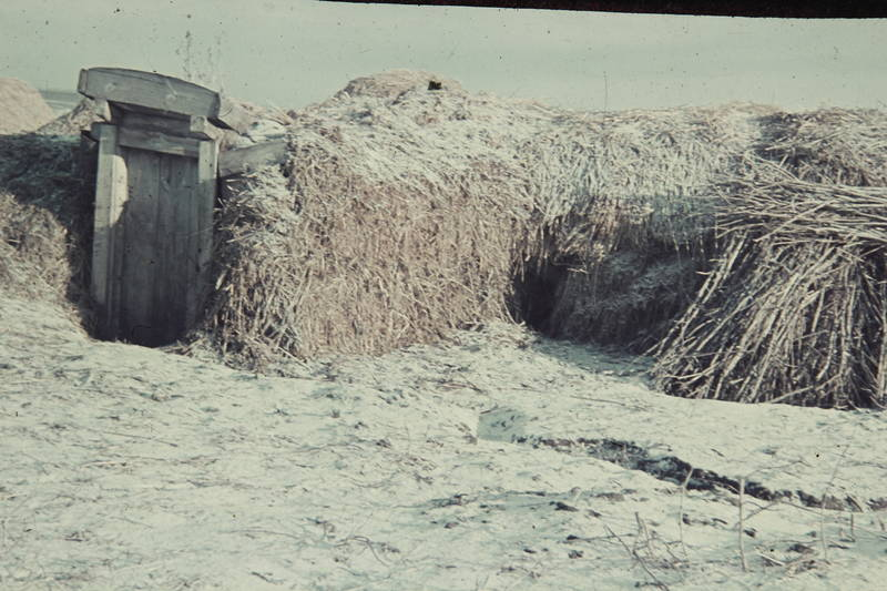 holztür, Kälte, schnee, Stroh, Strohhütte, tür, unterschlupf, Wetter, winter