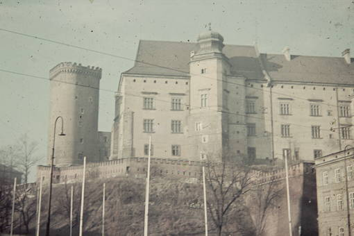 Burg Wawel