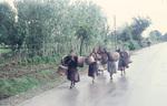 Frauen tragen Eimer