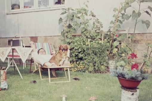 Hund und Mann sonnen sich