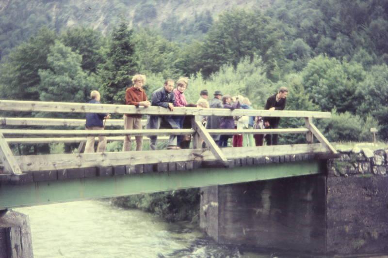 Aussicht, brücke, Fernglas, Holzbrücke, hut, tourismus, tourist