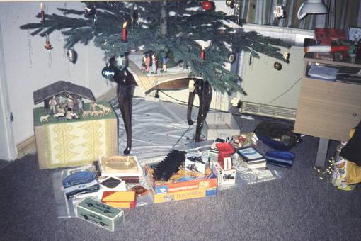 Unterm Weihnachtsbaum