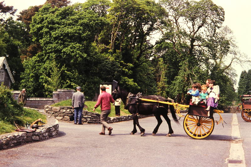 ausflug, familie, Irland, Killarney, Kutsche, Kutschfahrt, Muckross House, Pferd, urlaub