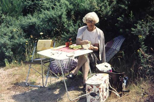 Picknick an der Küste