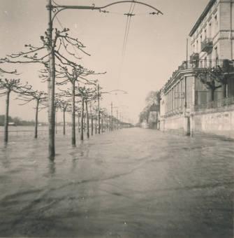 Rheinhochwasser