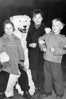 In den Armen des Eisbären