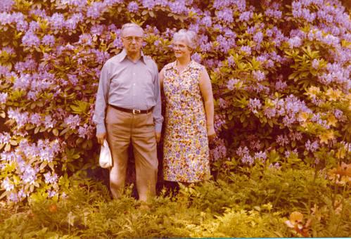 Vor einem Rhododendron
