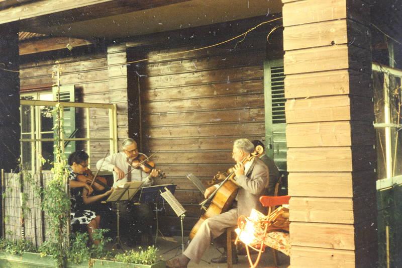 instrument, musik, musizieren, streichinstrument, Terrasse