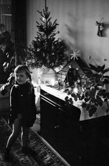 christbaum, Krippe, Tannenbaum, Weihnachten, Weihnachtsbaum